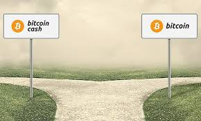 BTC vs BCH a fork in the road