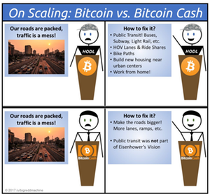 BTC vs BCH analogy